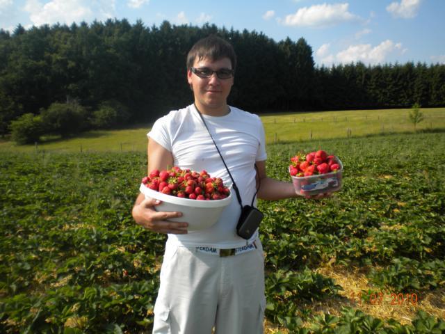 6.3_Erdbeer