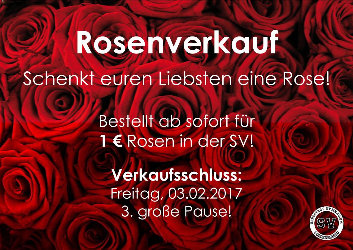 Rosenaktion_2017